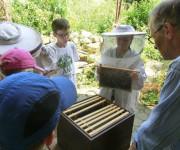 Die Kinder des Sommerferienprogramms beim Imker