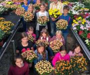 Mit Blumen Mut machen  EBK Blumenmönche