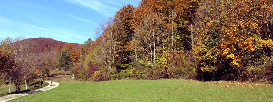 Naturschutzgebiet Goldland-Klausental